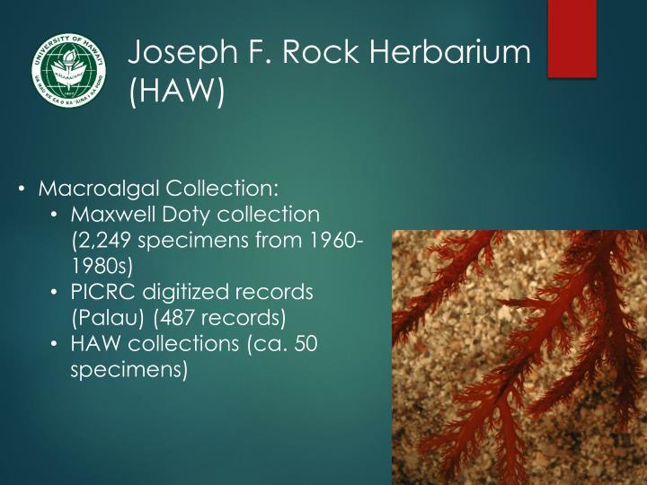 Joseph F. Rock Herbarium (HAW)