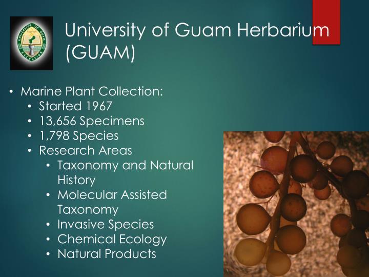 University of Guam Herbarium
