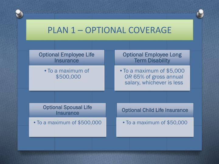 PLAN 1 – OPTIONAL COVERAGE