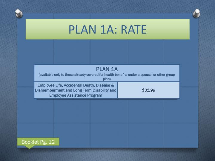 PLAN 1A: RATE