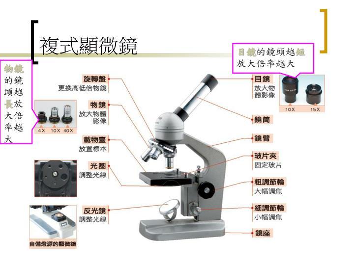 複式顯微鏡