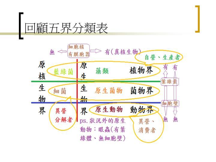 回顧五界分類表