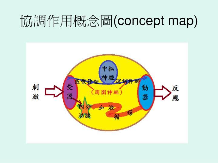 協調作用概念圖