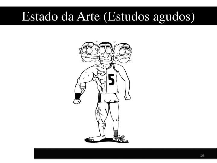 Estado da Arte (Estudos agudos)