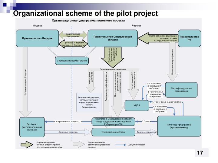 Organizational scheme of the pilot project