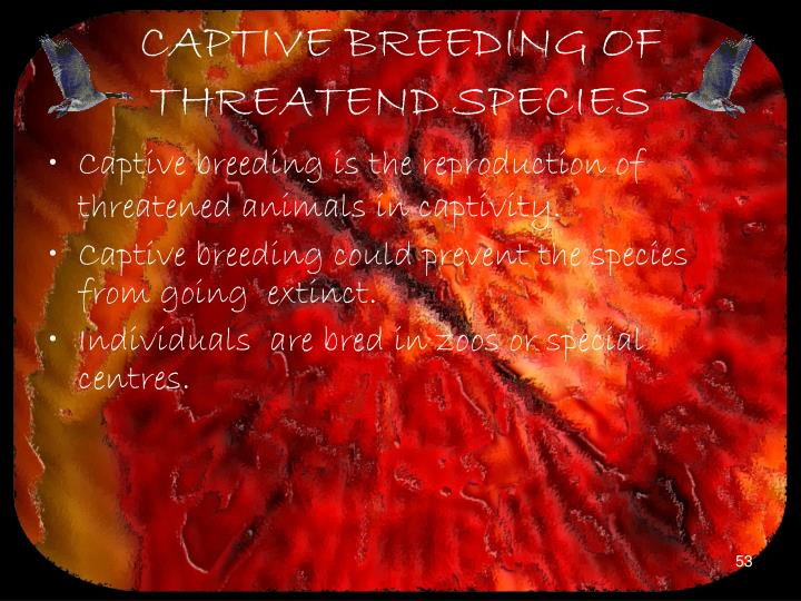 CAPTIVE BREEDING OF THREATEND SPECIES