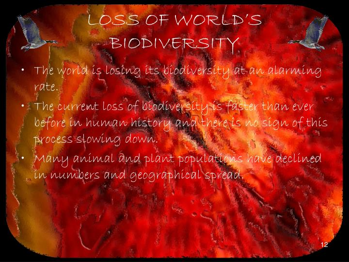 LOSS OF WORLD'S BIODIVERSITY