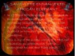 saving the endangered african elephant