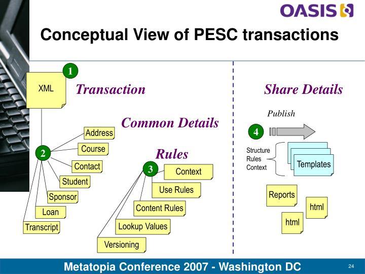 Conceptual View of PESC transactions