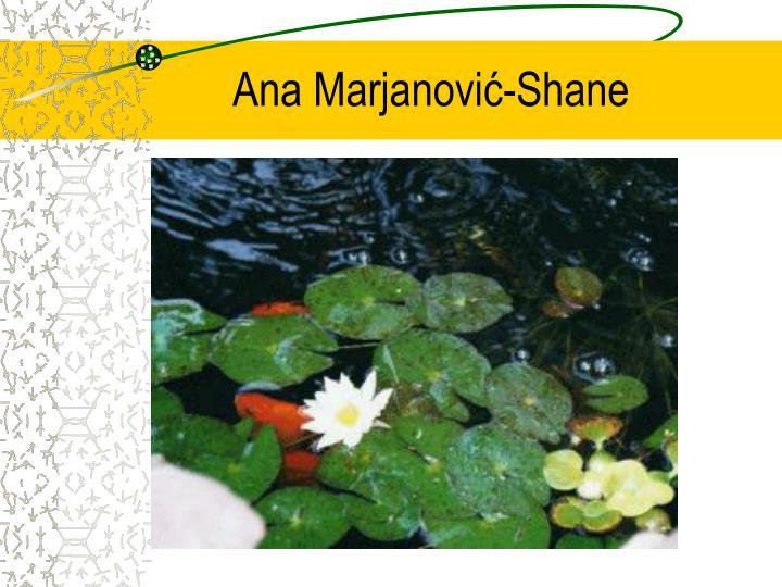 Ana Marjanovi