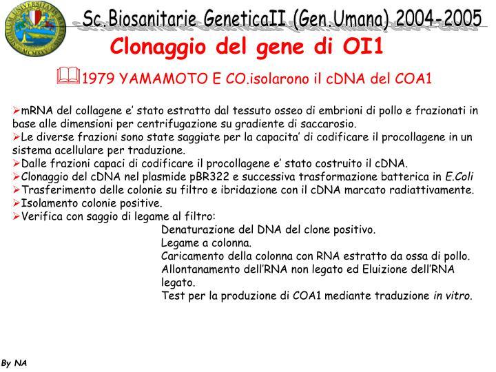 Clonaggio del gene di OI1