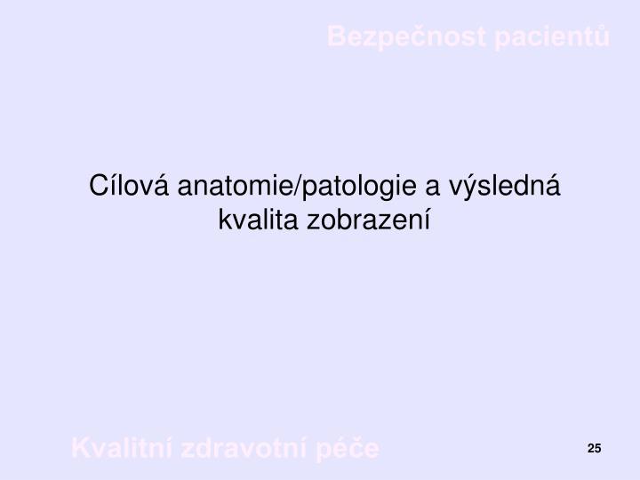 Cílová anatomie