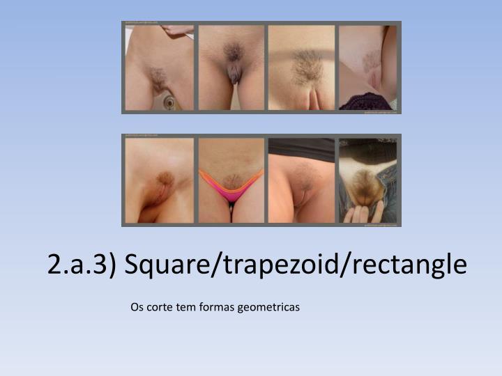 2.a.3) Square/trapezoid/rectangle