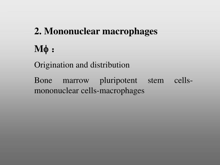 2. Mononuclear macrophages