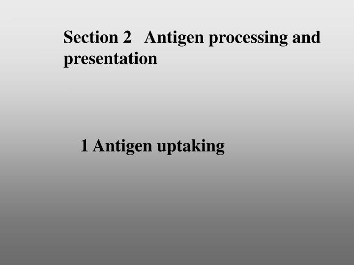 Section 2   Antigen processing and presentation
