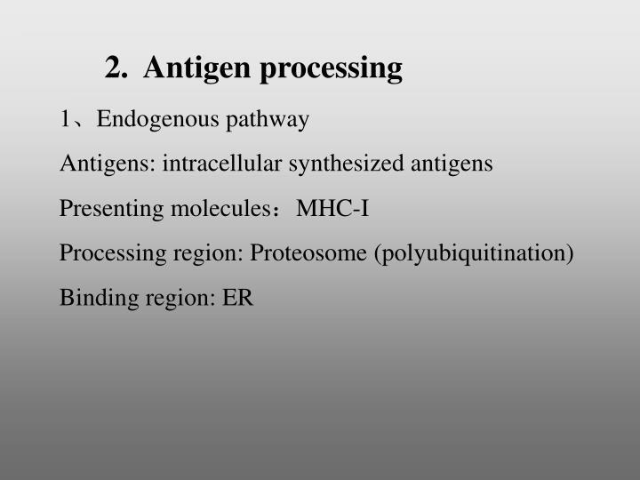 2.  Antigen processing