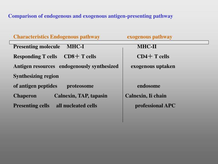 Comparison of endogenous and exogenous antigen-presenting pathway