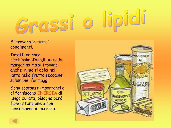 Grassi o lipidi