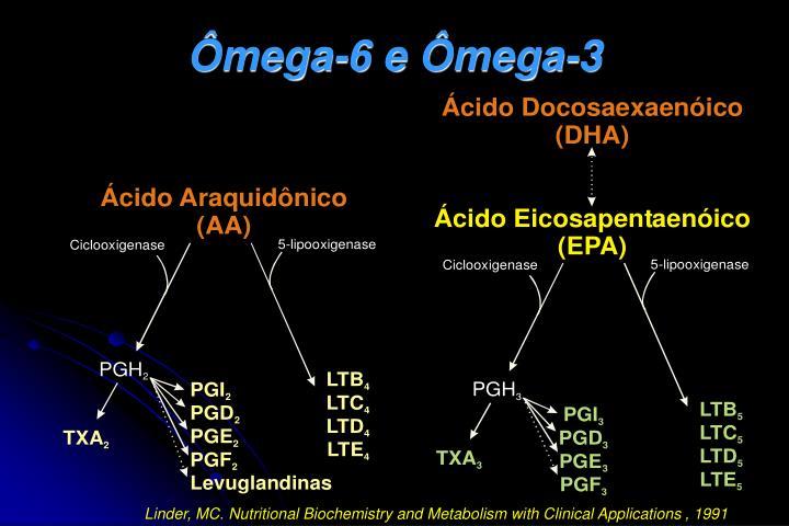 Ômega-6 e Ômega-3
