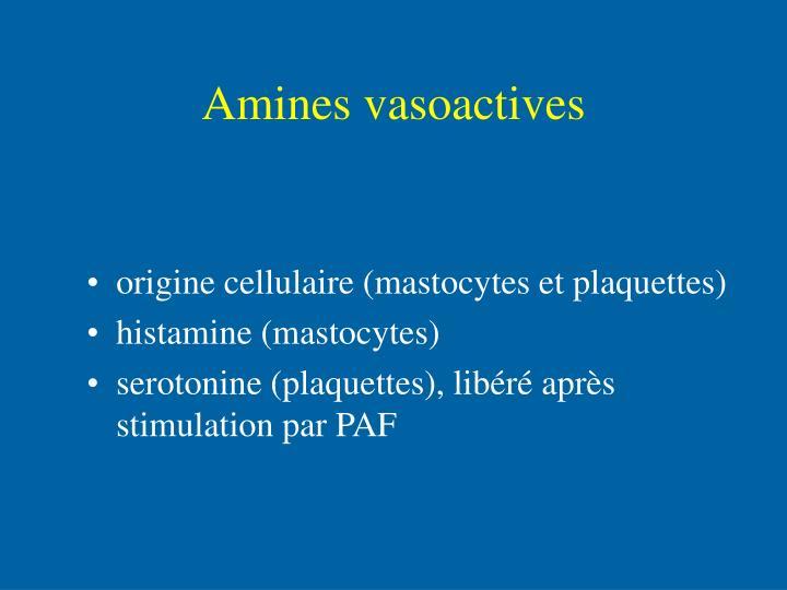 Amines vasoactives