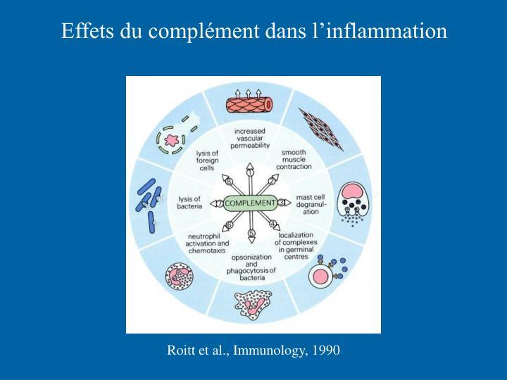 Effets du complément dans l'inflammation