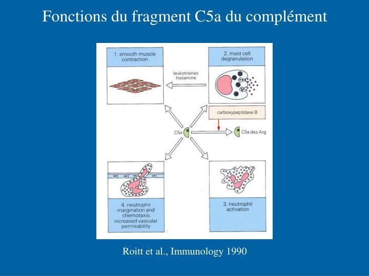 Fonctions du fragment C5a du complément