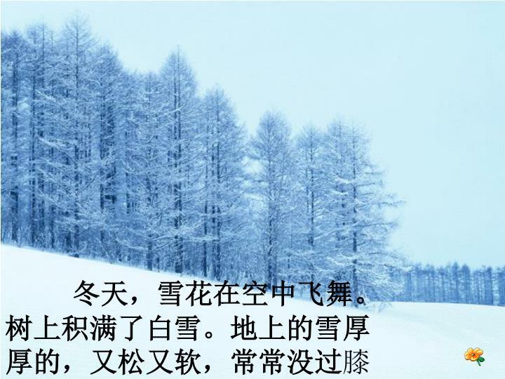 冬天,雪花在空中飞舞。树上积满了白雪。地上的雪厚厚的,又松又软,常常没过