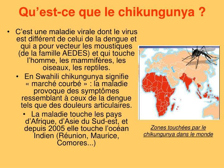 Qu'est-ce que le chikungunya ?