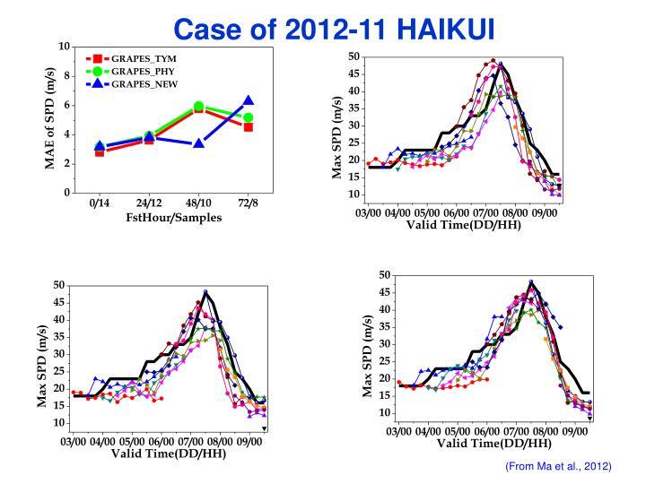 Case of 2012-11 HAIKUI