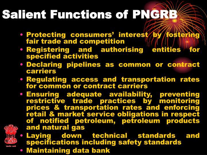 Salient Functions of PNGRB