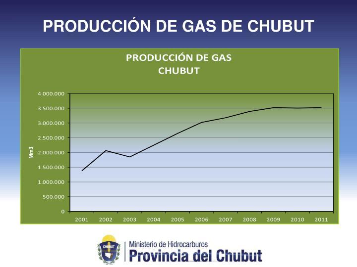 PRODUCCIÓN DE GAS DE CHUBUT