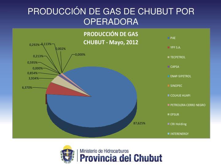 PRODUCCIÓN DE GAS DE CHUBUT POR OPERADORA