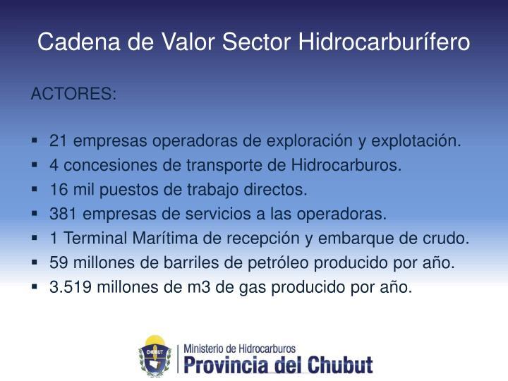 Cadena de Valor Sector Hidrocarburífero