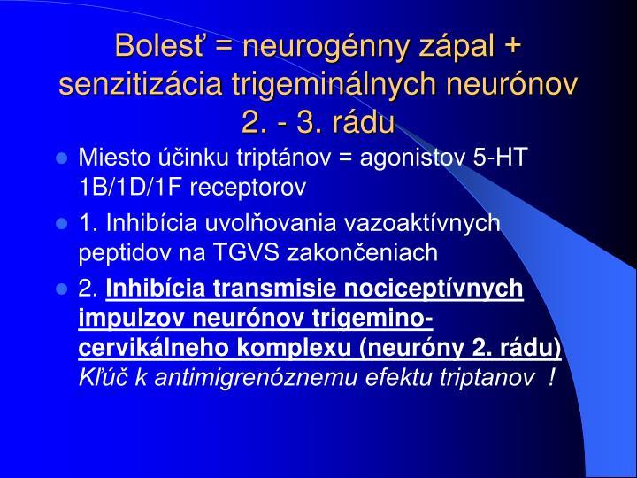 Bolesť = neurogénny zápal + senzitizácia trigeminálnych neurónov 2. - 3. rádu