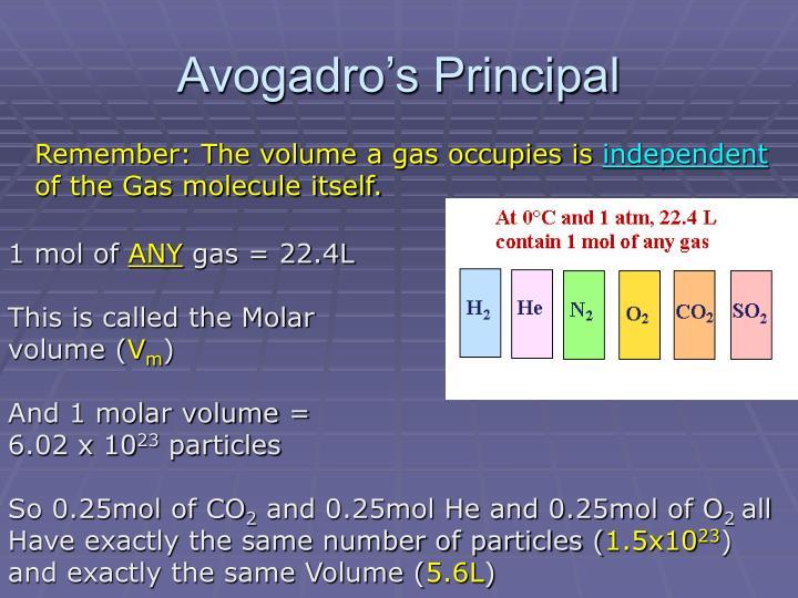 Avogadro's Principal