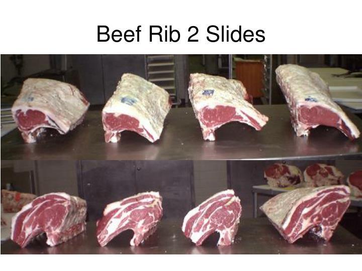 Beef Rib 2 Slides