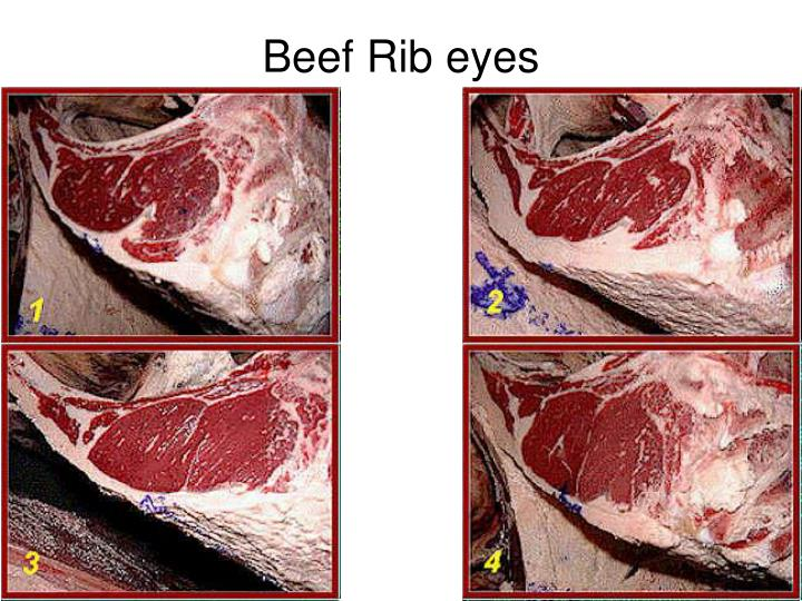 Beef Rib eyes