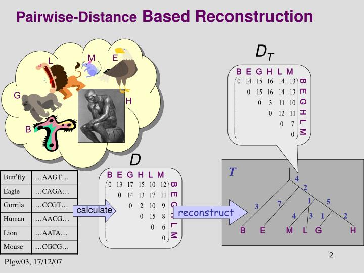 Pairwise distance based reconstruction