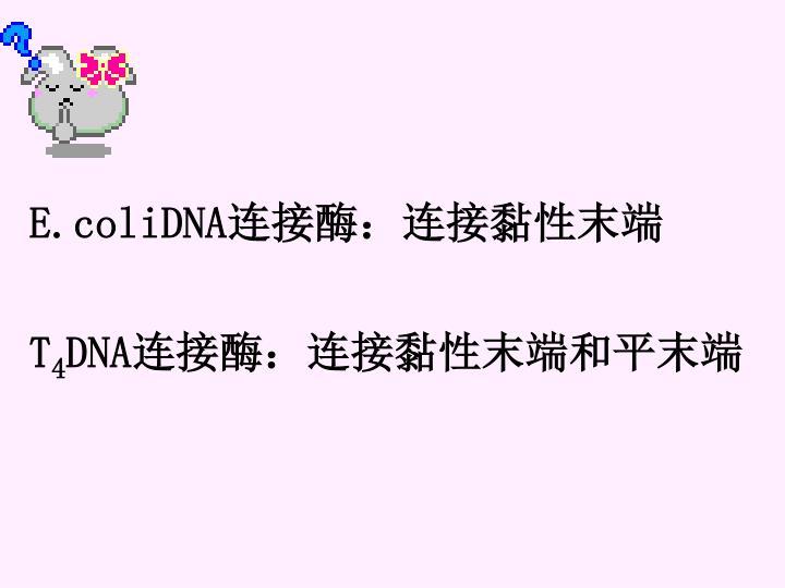 E.coliDNA