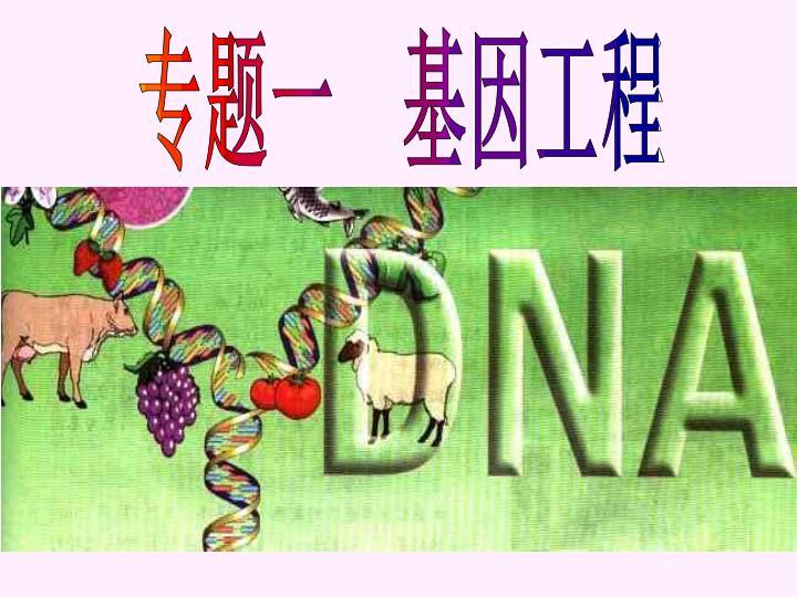 专题一 基因工程