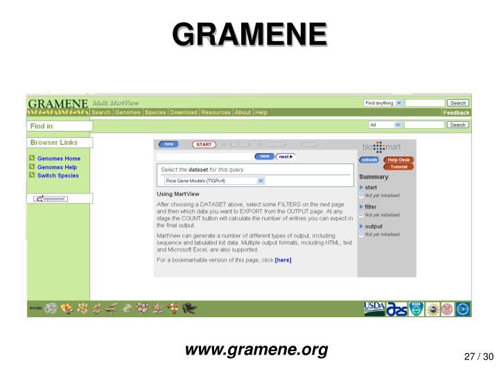 GRAMENE