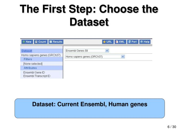 The First Step: Choose the Dataset