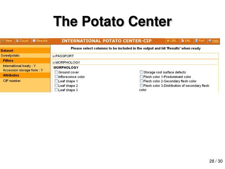 The Potato Center