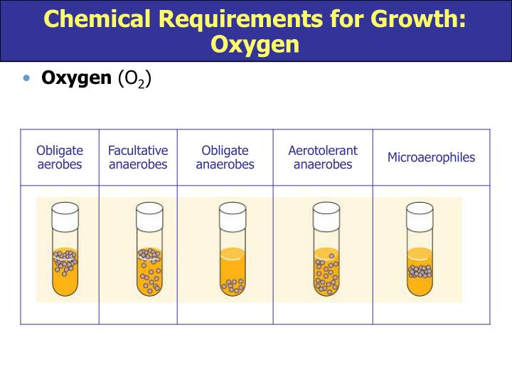Chemical Requirements for Growth:  Oxygen
