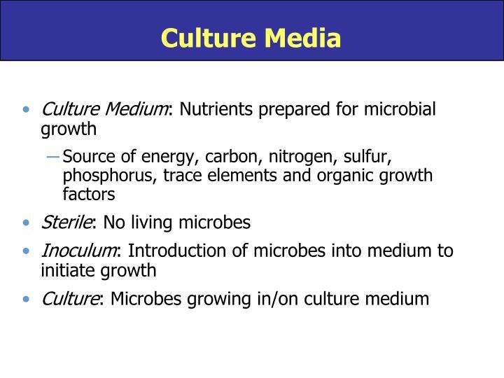Culture Media