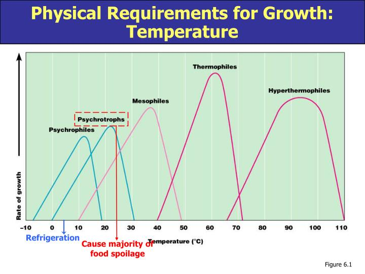 Physical Requirements for Growth:
