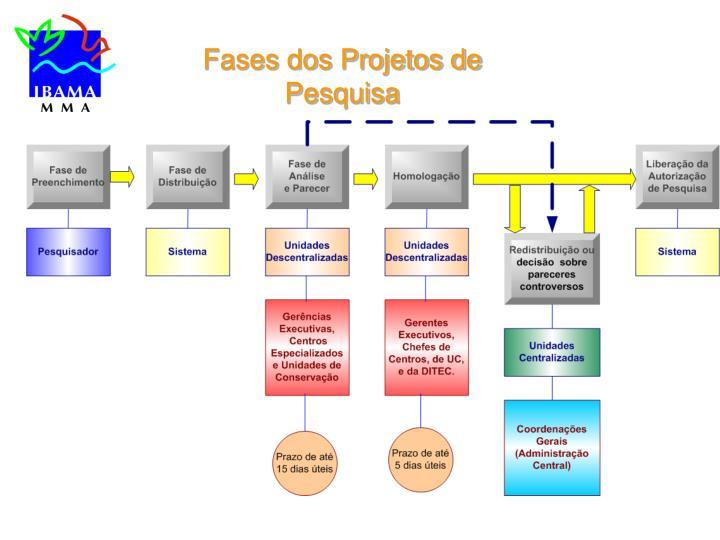 Fases dos Projetos de Pesquisa