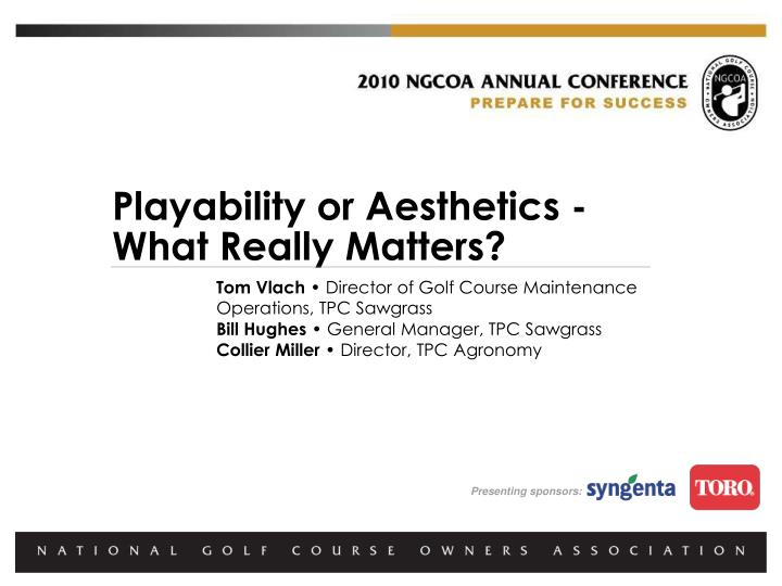 Playability or Aesthetics - What Really Matters?