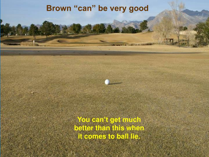 "Brown ""can"" be very good"