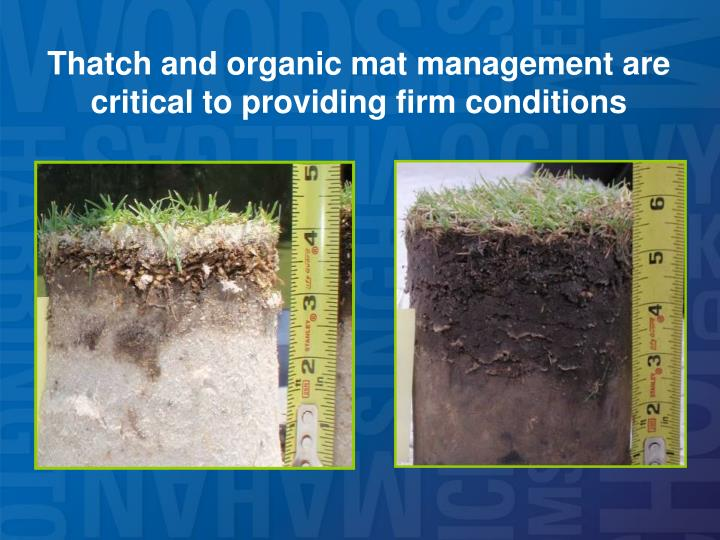 Thatch and organic mat management are critical to providing firm conditions